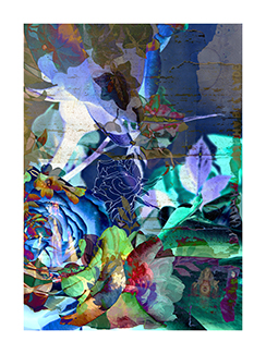 archival pigment print (edition of 5),  43.25 x 32.25 inches (109.9 x 81.9 cm)