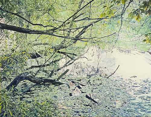 oil on linen,  54 x 71 inches (137.2 x 180.3 cm)